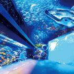 sendai_aquarium_mapping1