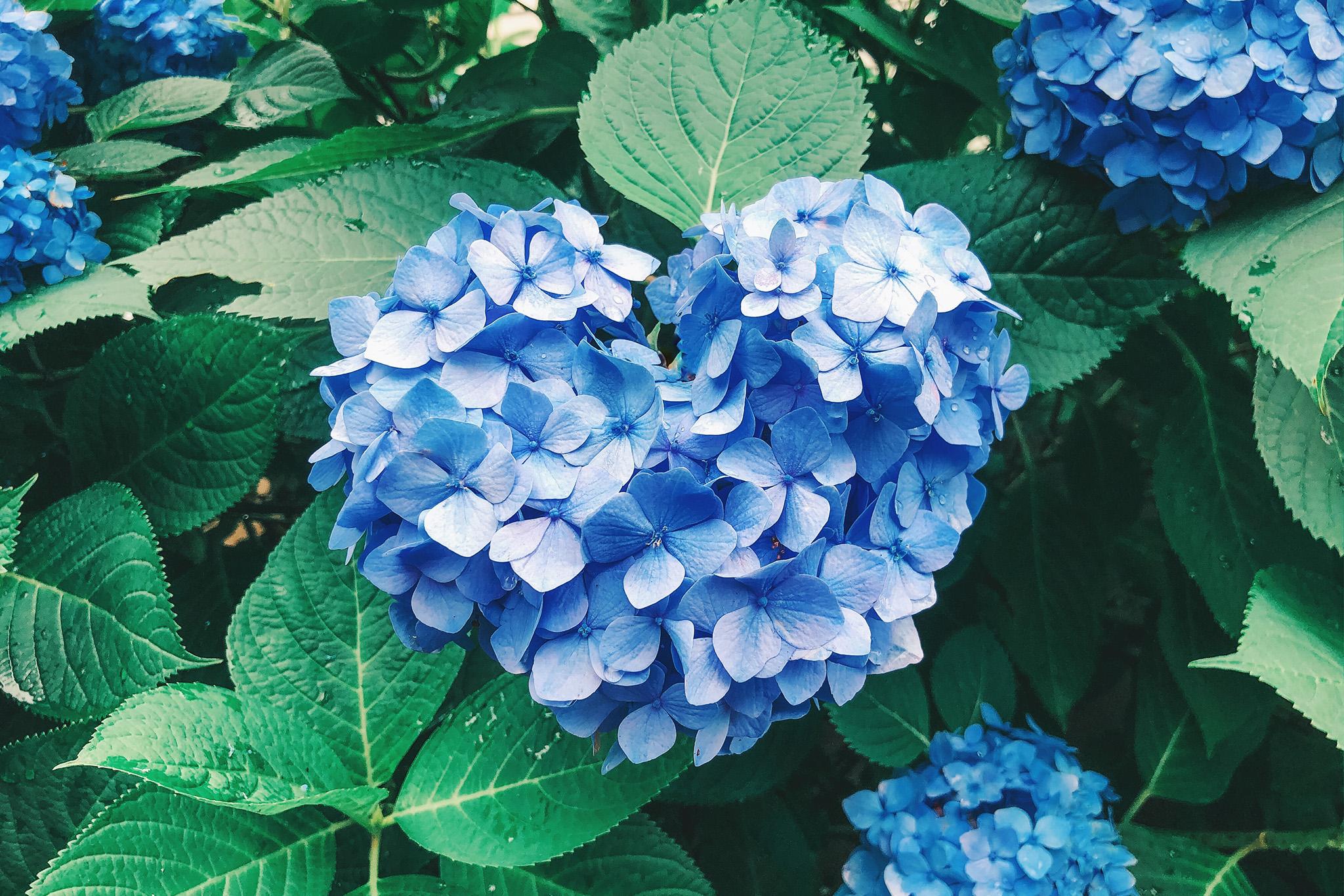 7月23日(木祝)ヨル撮 @泉中央駅周辺【⭐️満枠御礼⭐️】